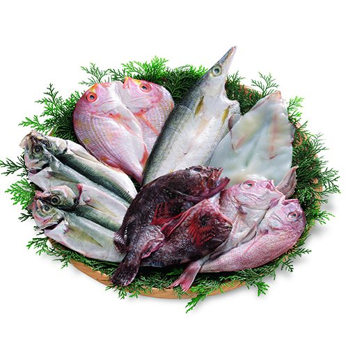あげな魚こげな魚 干物 詰合せ