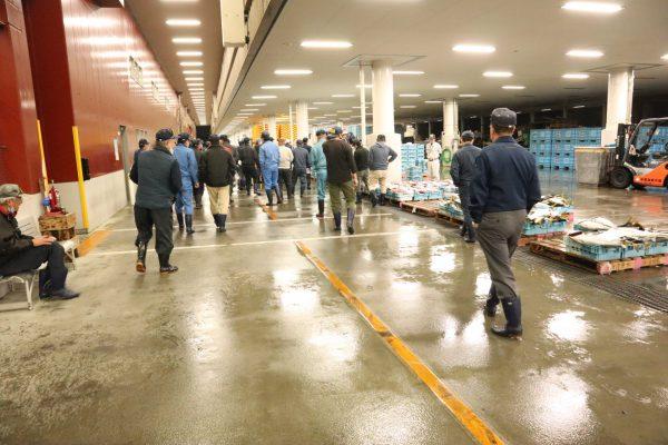 唐津魚市場_セリ1